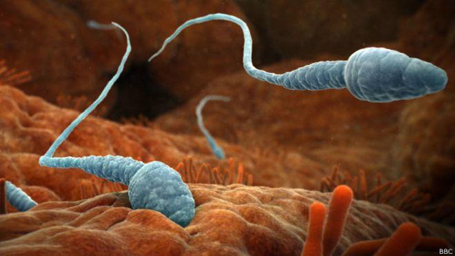 prichini-buraya-sperma
